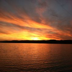 Great cottage on Canandaigua Lake in NY for sale! Best place on earth in the summertime...