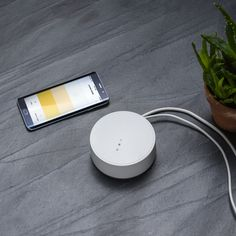 Inside Ikea's Big bet on Smart Home Tech For seven years, Ikea has treated the smart home as a hobby.[...] The post Inside Ikea's Big bet on Smart Home Tech first appeared on Technology in Business. Dig Gardens, Back Gardens, Garden Art, Garden Design, Philips Hue, Garden Posts, Home Tech, Garden Structures, Home