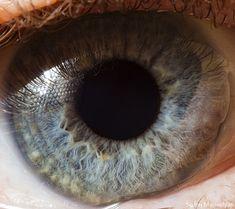 The fantastic macro photos of the human eye by Suren Manvelyan.Incredible close-up photos of Your beautiful eyes Natural Eyes, Natural Eye Makeup, Blue Eye Makeup, Makeup For Brown Eyes, Makeup Eyes, Texture Photography, Eye Photography, Photography Gallery, Realistic Eye Drawing