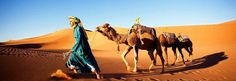 We offer a Wide choice of Trekking, Hiking, Walking Holidays in the Atlas Mountains of morocco  for all abilities.  Daily Private or shared Camel trekking Tours into the Sahara desert are available. Day Trips and excursions out of Marrakech. desert tours.