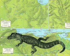 Herbertco on etsy - vintage map art  crocodile print on vintage venezuela