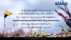 252 Best Telugu Quotes Images In 2019 Telugu Me Quotes Quotes