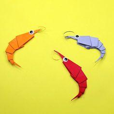 Origami Maniacs Shrimp
