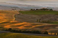 Golden morning by Fabrizio Lunardi on 500px