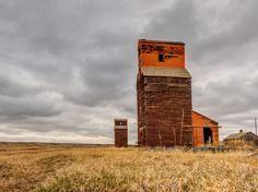 Neidpath grain elevators