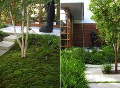 modern landscaping design plastolux CMG