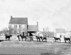 Gettysburg, Pa, near G.J. White's house, July 1863