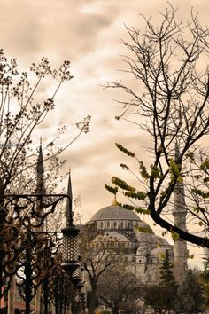 Istanbul Mosque by Sara Mariani