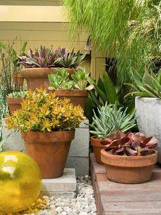 ideen gartengestaltung günstig einrichten saftpflanzen