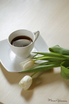coffee - null