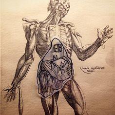 #manifesto #anatomico by @iosissi #bologna #art #arte #artefiera #artcity