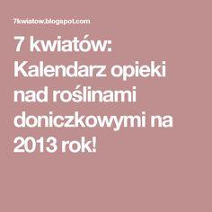 7 kwiatów: Kalendarz opieki nad roślinami doniczkowymi na 2013 rok!