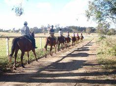 Mowbray Park Farmstay Holidays: Trail ride Deer Farm, Australia Holidays, Farm Holidays, Farm Stay, Trail Riding, Sydney Australia, Farm Life, Trip Advisor, Mission Trips