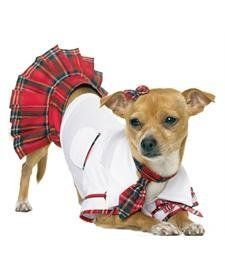 School Puppy Costume *** Click on the image for additional details. This is an Amazon Affiliate links.