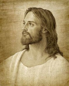 """LDS Principles Blog: """"I will give you rest..."""""""