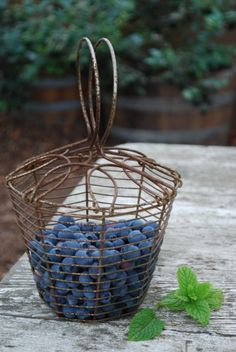 Just-Picked Blueberries In Vintage Berry Basket #Anthropologie #PinToWin