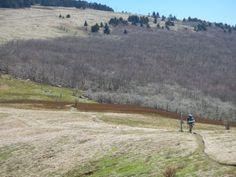 A fellow hiker on the Appalachian Trail near Mt. Rogers.