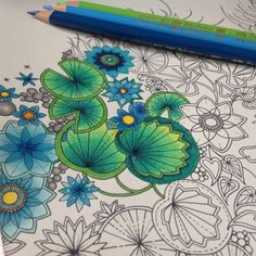 Johanna Basford | Picture by Yupphire | Colouring Gallery
