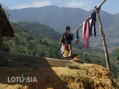 Trek Sapa Vietnam est un de nos circuits d'une journée qui est construit ceux qui n'ont pas beaucoup de temps à Sapa.