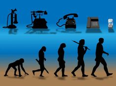 Evolution stumbling block to strong scientific education in US