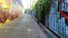 Dove sono le più belle opere di street art a Milano? Ve lo raccontiamo su Milano Weekend