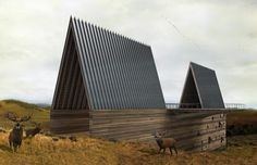 dzn_Ark-House-by-Axis-Mundi-5