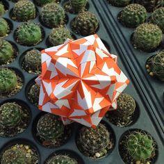 いいね!41件、コメント3件 ― OrigamiMathThailandさん(@narong_pbru)のInstagramアカウント: 「Sonobe variations #origami #origamipaper #origamiart #kusudama #kusudamaball #paper #papercraft…」