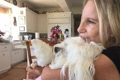 "Barbra Streisand and her Coton de Tulear Samantha—whom she affectionately called ""Sammie""—had been inseparably for the past 14 years. Sadly, the beloved pup passed away on Sunday—just one week after her birthday. Streisand posted a heartbreaking message to her Instagram: ""Jason took this pic of me holding Sammie on Mother's Day. This is the last time my picture was taken with my beloved girl Samantha. May she rest in peace. We cherish every moment of the 14 years we had with her. May 2003..."