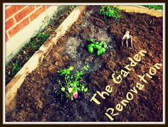 The ABC's of Life: The Garden Renovation