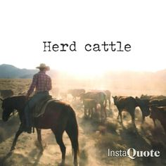 I've learned how to rope cattle, but I would love to go on a cattle run!!!