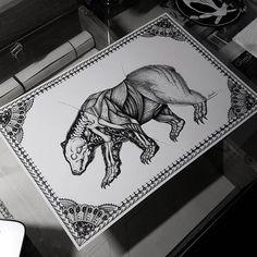 #drawing #draw #instadrawing #instaart #instasketch #skeleton #bones #muscle #pelt #bear #polarbear #animals #animalsdrawing #blackandwhite #blackworkartists #blackworks #blackwork #tattoos #tattooidea #tattoodrawing #disegno #vizatim