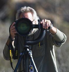 7 Basic Tips That Will Make Your Stock Photographs Sell Like Hotcakes | Light Stalking