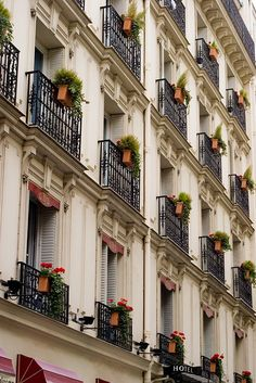 | ♕ |  Balcony Gardens - Paris  | by © mezzoblue | via ysvoice