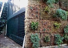 Comparativa sistemas Jardín vertical