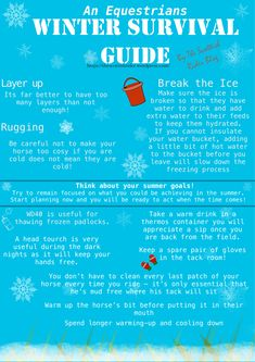 Winter survival guide from the Scottish rider