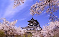 【散歩好き必見!】愛知県ひとり旅におすすめのエリア別観光案内♪/aumo【アウモ】 Japan Travel, Japan Trip, Japanese Castle, Little Library, Clouds, Mansions, Cherry Blossoms, House Styles, Outdoor