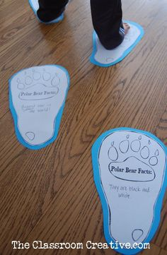 polar bear facts activity for kids free printable