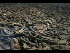 The documentary auschwitz the forgotten evidence history