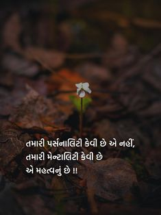 Morari Bapu Quotes, Best Quotes, Life Quotes, Genius Quotes, Gujarati Quotes, Cute Love Quotes, Special Quotes, Creative Posters, Reality Quotes