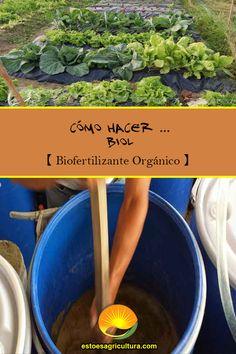 El biol es una fuente de fitorreguladores que se obtiene del proceso de descomposición anaeróbica de los desechos orgánicos. Environment, Happy, Organic Fertilizer, Compost, How To Make, Plants, Blue Prints
