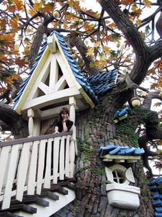 Sweet!! Now that's a tree house.