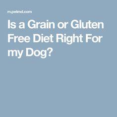 Is a Grain or Gluten...