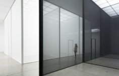 uvre:  Double Blind, Robert Irwin.
