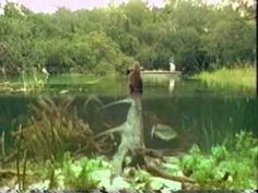 Bass Fishing, Bigmouth Forever - YouTube...great film!