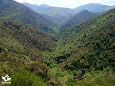 Valle del río Rigüelo, en el GR 190 del Monasterio de Valvanera a Viniegra de Abajo. #LaRiojaApetece  #senderismo