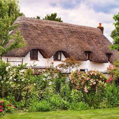 Thatched Cottage in Monxton, Hampshire, UK