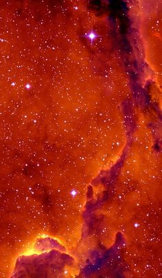 """analamasblog: """"THE ELEPHANT'S TRUNK NEBULA - The Elephant's Trunk nebula is a concentration of interstellar gas and dust within the much larger ionized gas region IC 1396 located in the constellation..."""