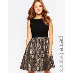 Little Mistress Petite Skater Dress With Lace Skirt ($55) ❤ liked on Polyvore featuring dresses, black, lace dress, black skater dress, lace fit and flare dress, skater dress and metallic cocktail dress