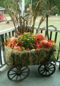 Since it's the fall season, here are some brilliant Fall Porch decor ideas. These Rustic Fall Front Porch decor ideas will bring in the colorful autumn vibe Autumn Decorating, Porch Decorating, Decorating Ideas, Decoration Entree, Garden Cart, Deco Floral, Thanksgiving Decorations, Fall Decorations, Outdoor Decorations
