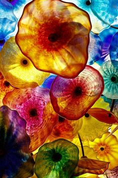 Part of the ceiling of the Bellagio Casino in Las Vegas. It's adorned with 2,000 hand-blown glass flowers - the Fiori di Como - created by world-renowned artist, Dale Chihuly. coloursc